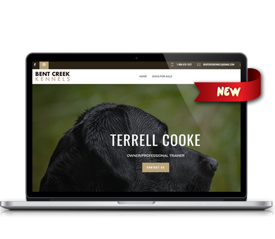 Bent Creek Kennels - Amarillo Website Design, Amarillo Web Design, Amarillo Web Designers, Amarillo Webpage Designer